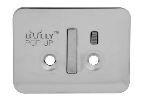 Bully Stainless Steel Tie Down Anchors