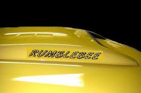 Rumble Bee Custom Outline Decals